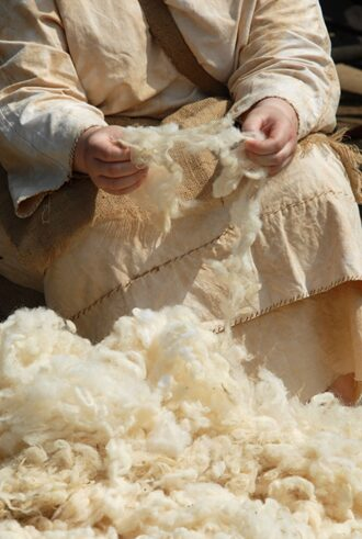 Once the wool has been washed it is sorted by hand into varying lengths and tones (Image-Shutterstock)